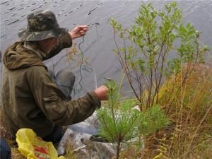 В каких водоемах можно ловить леща на сало
