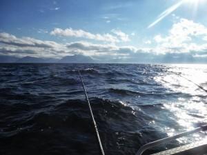Для удачной рыбалки нужен ветер