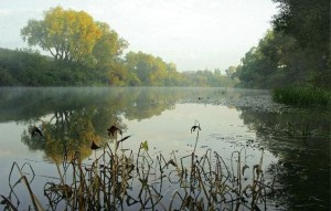 Поиск мест обитания леща