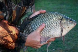 Чем порадует сибирская рыбалка