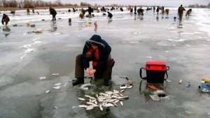 Река манит рыболова трофеями